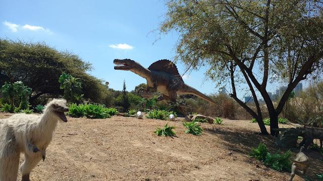 דינוזאור מעופף בתערוכה