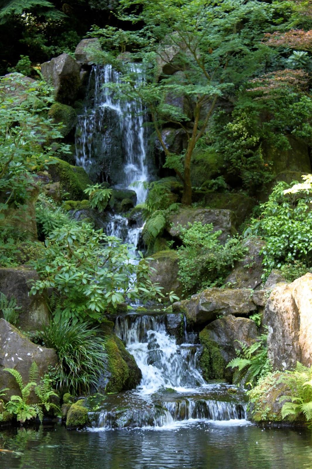 Portland Japanese Garden Store: A Charlotte Garden: Summer Wrap-Up: Portland, Day 3, Part 1