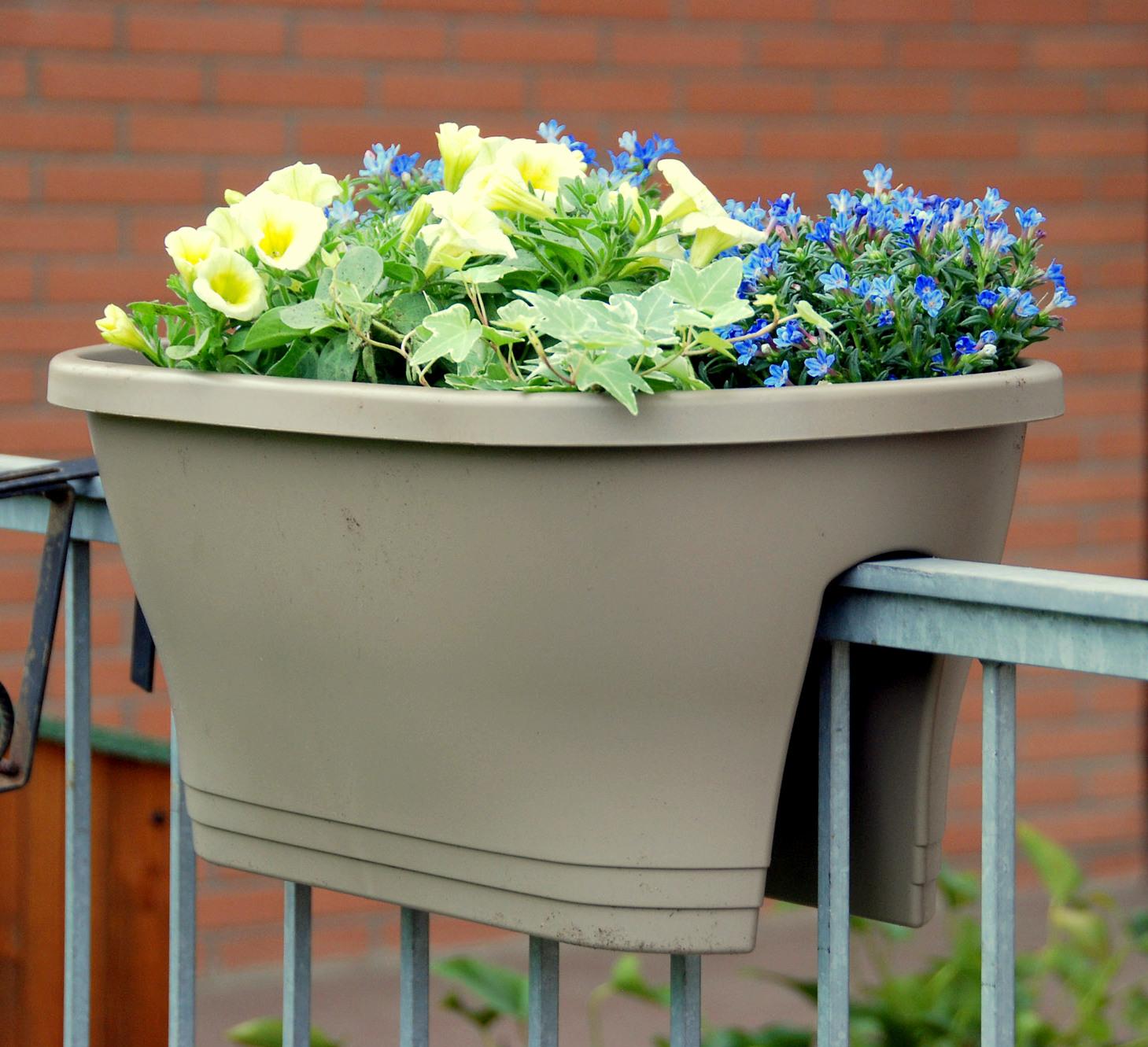 Idee Per Vasi Da Fiori il mondo in un giardino: ancora idee per composizioni in vaso