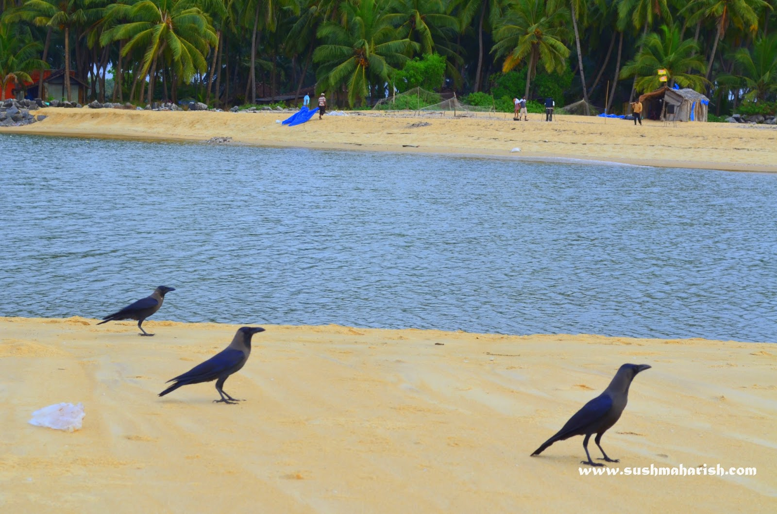 Two Best Beaches Of Udupi - Bengre The Silent Estuary And The Swarming Malpe 4