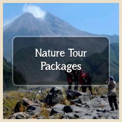 Nature tour yogyakarta