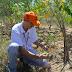 ZPP Meio Ambiente: Pesquisa da Embrapa mostra que produtor preserva meio ambiente