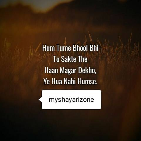 Tumko Naa Bhool Payenge Sensitive Breakup Shayari Lines Whatsapp Image in Hindi