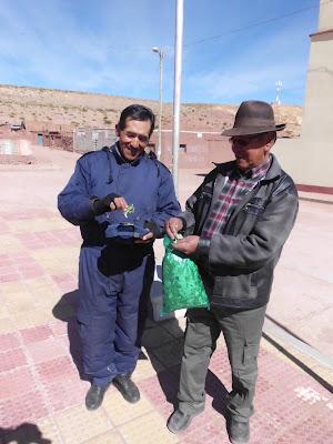 Auch Cocablaetter werden der Pachamama geschenkt