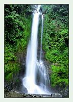 Wisata Air Terjun Gitgit Bali