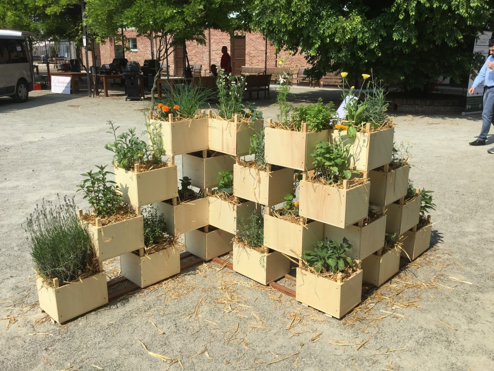 Separe 39 vegetale sfumature verdi for Creazioni giardini