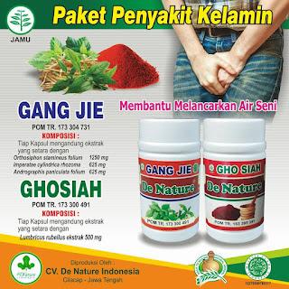 Jenis Obat Sipilis Di Apotik Umum Herbal