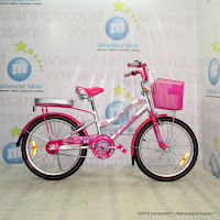 20 Inch Family Girl Power City Bike