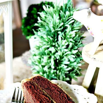 Positvely Perfect Homemade Coca Cake