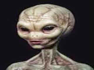 http://freshsnews.blogspot.com/2016/11/15-aliens.html