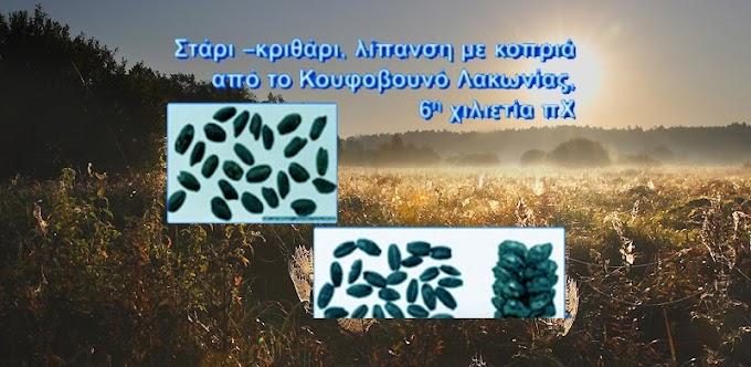 Η γεωργία ξεκίνησε στην Ελλάδα.