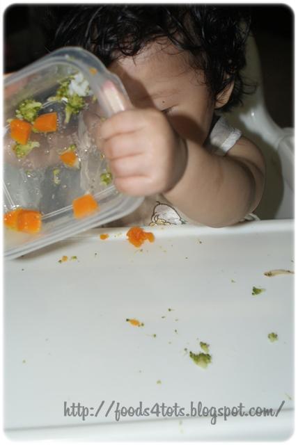 Tiny Tummies Baby Food Inc Recall
