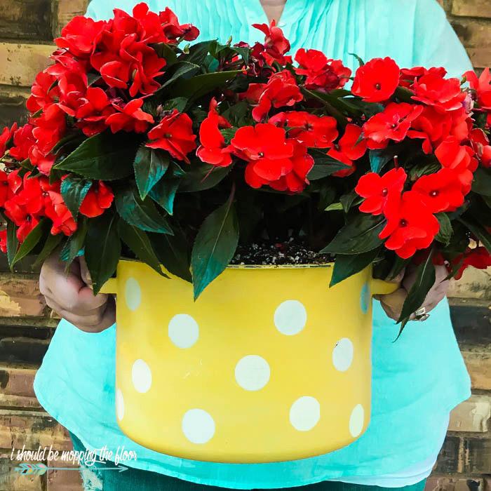 Cute Planter