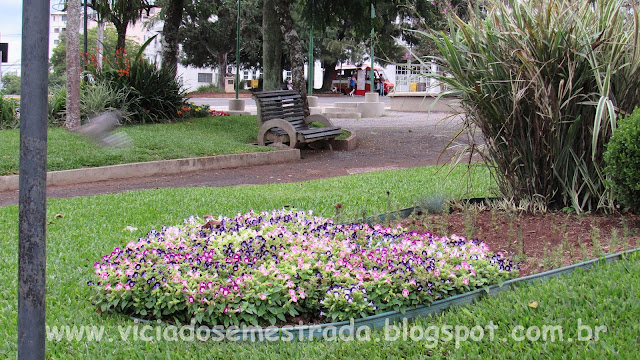 Flores na Praça da Bandeira