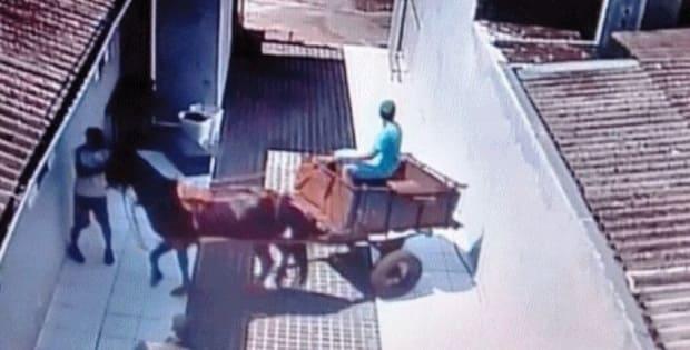 Adolescentes usam carroça para furtar material de construção em Três Barras