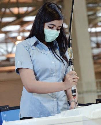 Lowongan Kerja PT Sharp Electronics Indonesia KIIC Karawang