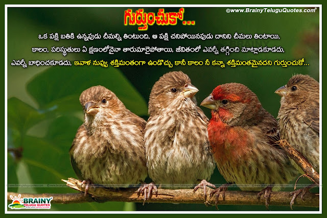 Inspirational Quotes in Telugu, life Quotes in Telugu, life value Quotes in Telugu