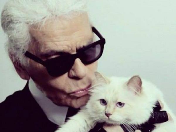 Choupette, la gata millonaria de Karl Lagerfeld