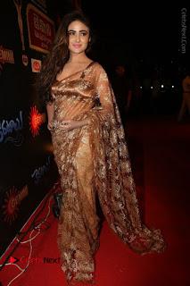 Actress Model Sony Charishta Stills in Beautiful Embroidery Saree at Gemini TV 2016 Puraskaralu Event  0141.JPG