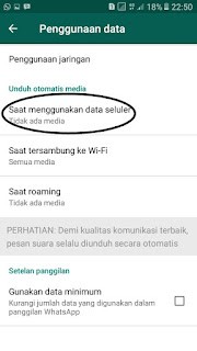 pengaturan download media di whatsapp