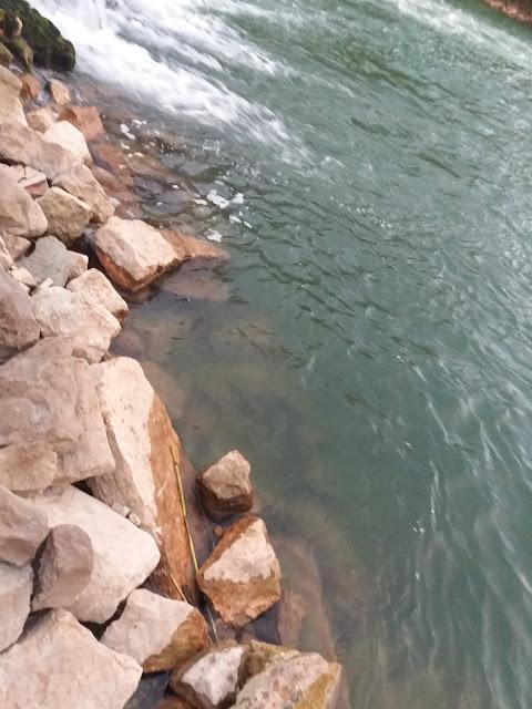 Randevúzás sziklák fele