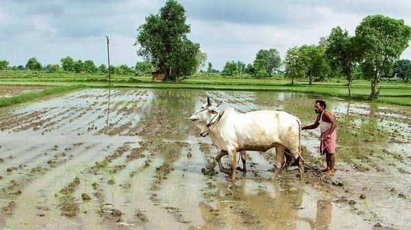 कृषि सुधार के लिए सहकारी संघवाद जरूरी है