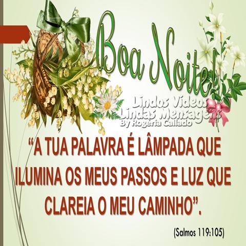 """Boa Noite! """"A TUA PALAVRA É LÂMPADA QUE  ILUMINA OS MEUS PASSOS E LUZ  QUE CLAREIA O MEU CAMINHO"""".  (Salmos 119:05)"""