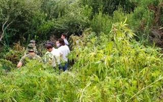 Καστοριά: «Μύρισαν» τους αστυνομικούς και δεν πήγαν να παραλάβουν το φορτίο