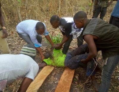 fulani herdsmen kill farmer ekiti