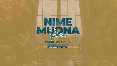 Download Audio | Goodluck Msuya - Nimemuona Bwana