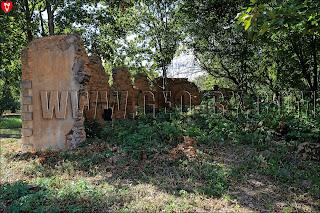Усадьба Рейтанов. Руины стены