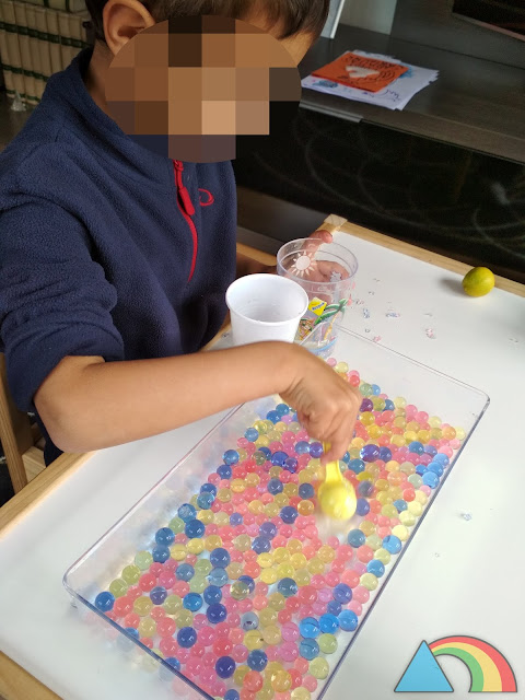 Niño haciendo trasvases de bolas de gel o water beads de colores con vasos y cucharas