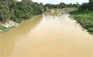 water-level-incresing-in-dhons-madhubani
