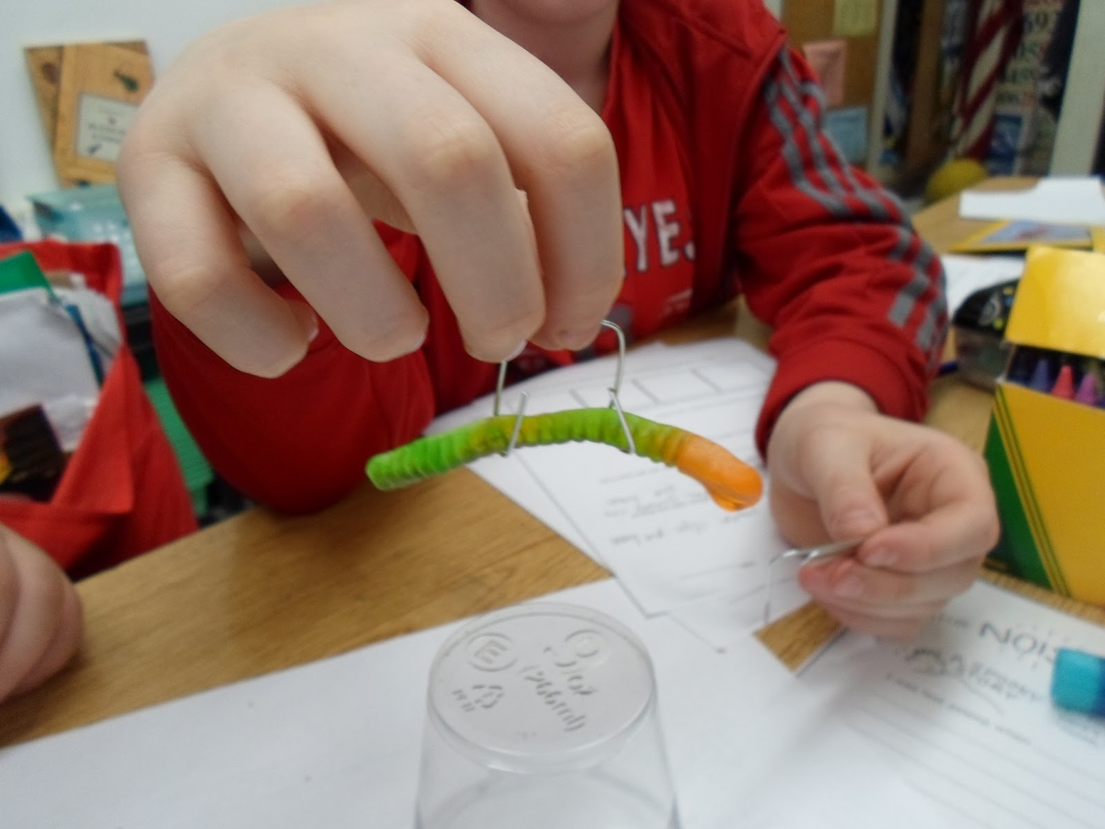 Growing A Stem Classroom Can You Save Fred Activity