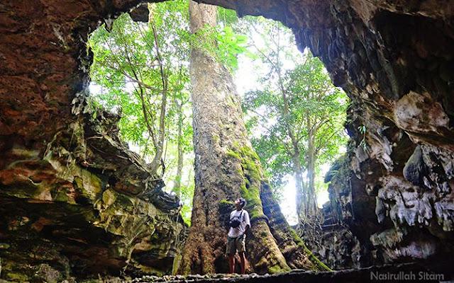 Berpose di bawah Pohon Klumpit Gua Rancang Kencono