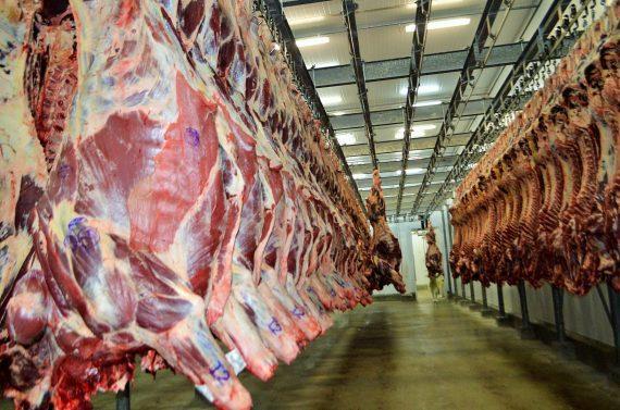 Reabertura da importação de carne por Hong Kong traz otimismo à cadeia produtiva de Rondônia