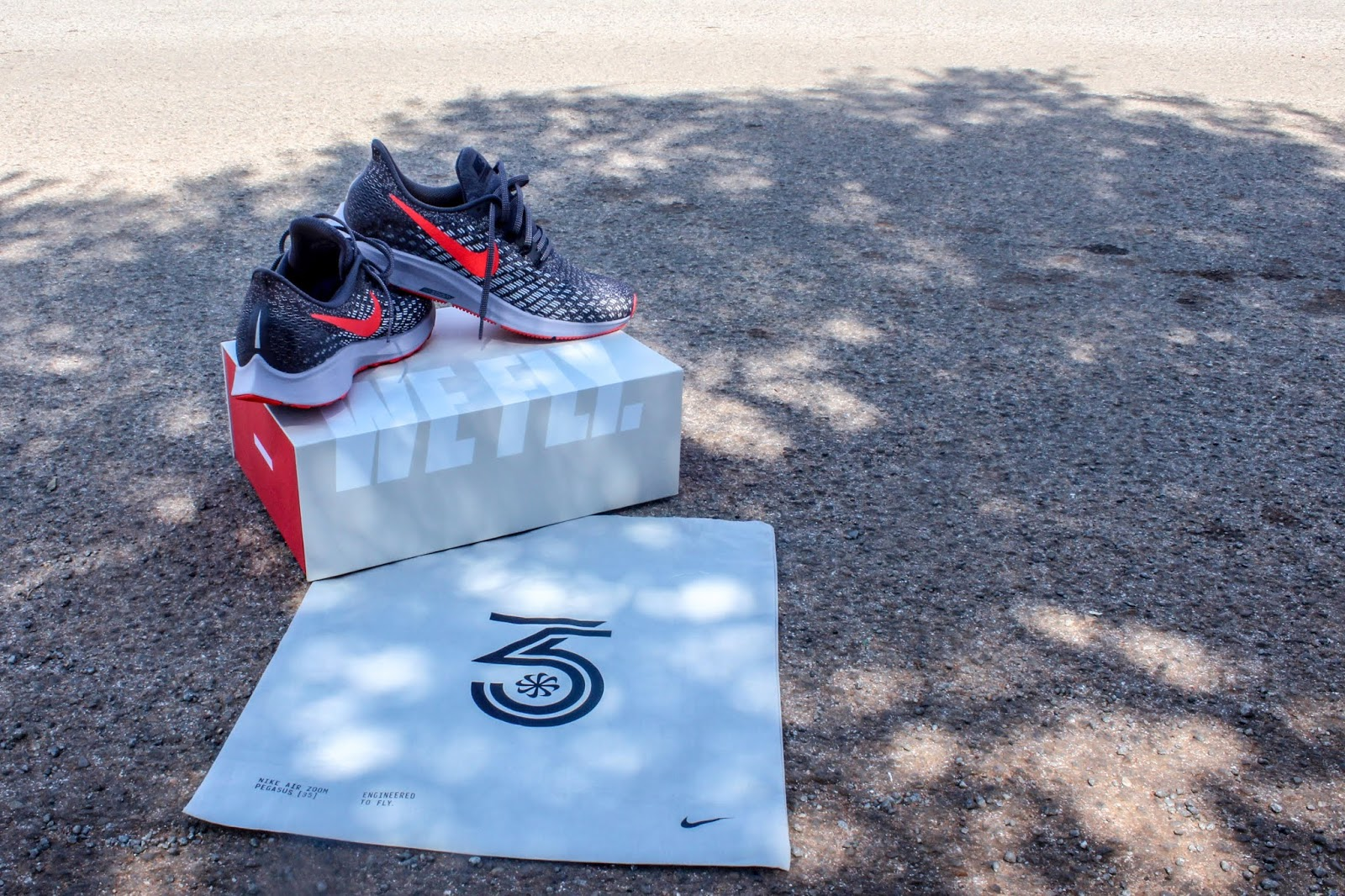 dc2fb8c333ae Nike Air Zoom Pegasus 35. - ThatIndieRunner