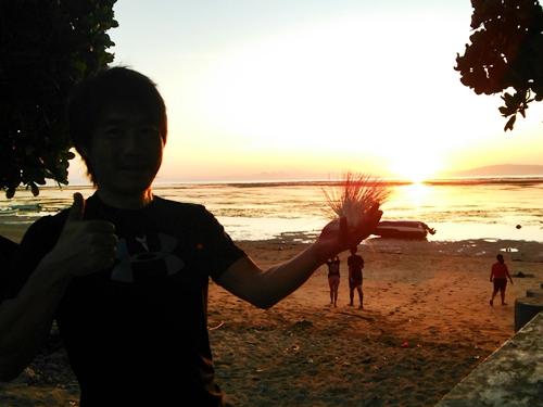 サヌールの日の出とインドネシア語ではPutat Lautという名の花