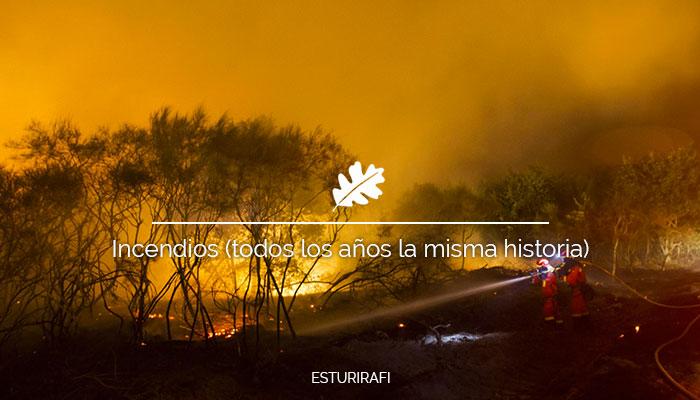 Incendios (Todos los años la misma historia)