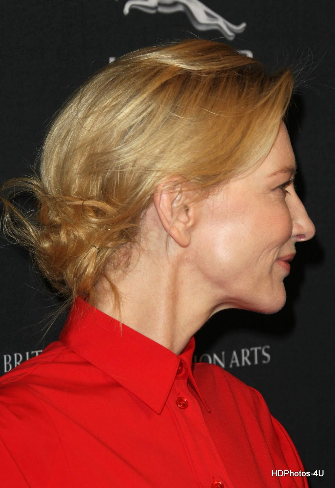 BAFTA Full HQ Photos: Cate Blanchett at 2014 BAFTA LA Awards in Beverly Hills