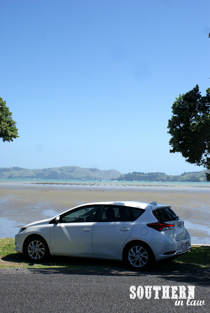 Coromandel Area New Zealand North Island