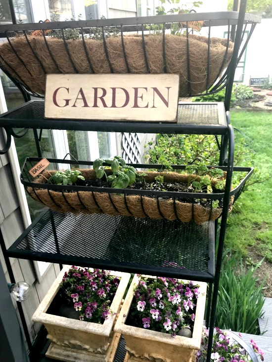 DIY herb garden ideas for a baker's rack