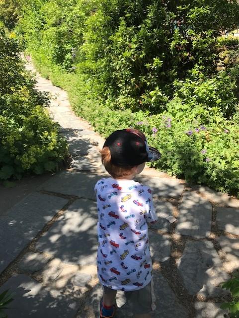 Little boy walking up a garden path
