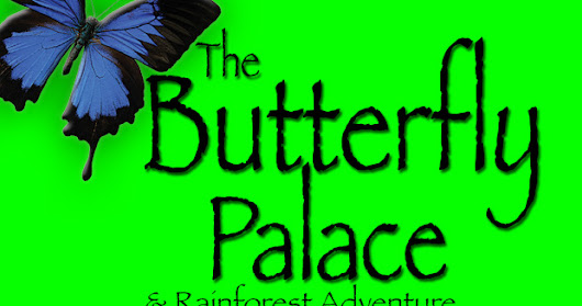 The Butterfly Palace - Branson