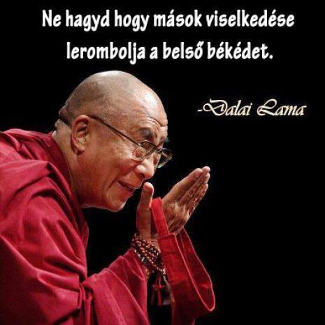 dalai láma idézetek Dalai láma idézetek I. Fényörvény dalai láma idézetek