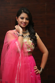 Geethanjali sizzles in Pink at Mixture Potlam Movie Audio Launch 016.JPG