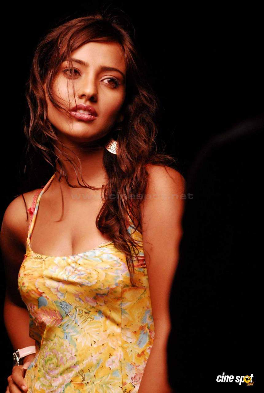 Bollywood Actress Neha Sharma Latest Hd Images 2017-2852