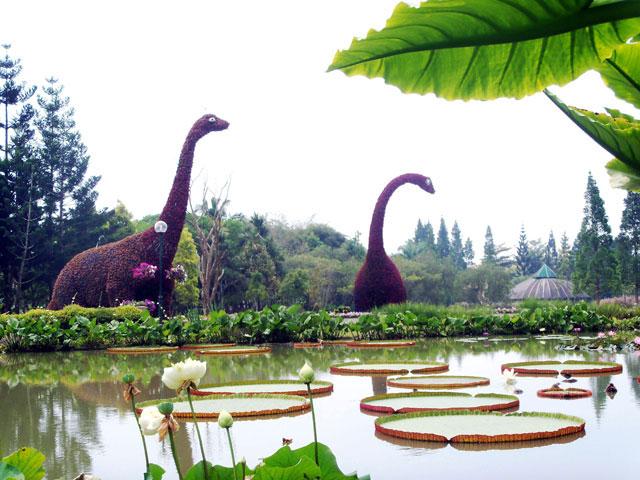 Review Lengkap Taman Bunga Nusantara Bogor dan Harga Tiket Masuk