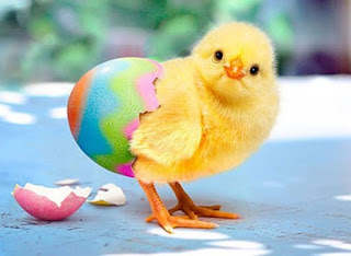 free happy easter images 2016
