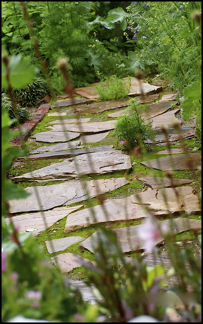 Looking through stems to mossy path of flagstone.